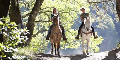 Horseback Riding in the Tuscan Hills with Lunch