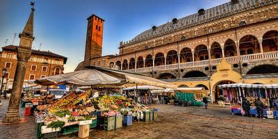 Padova Full-Day Tour di treno da Venezia