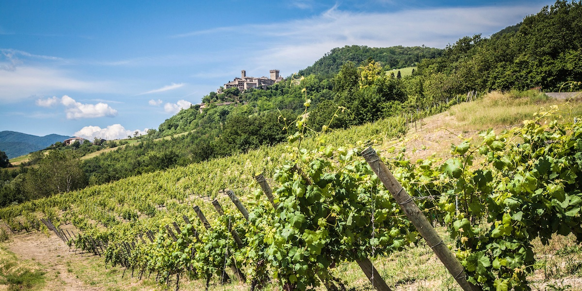 Piacenza's Hills