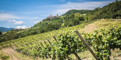 Guide of Piacenza's Hills