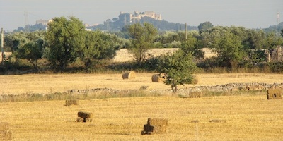Guide of Brindisi Inland