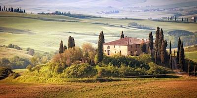 Trips near Arezzo