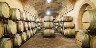 From Bologna: Full-Day Franciacorta Wine Tour & Tasting