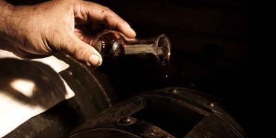 Balsamic Vinegar Tasting Experience in Modena