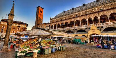 Padua Full-Day Tour From Venice by Train
