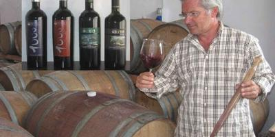 Sicily 7-Hour Cooking Class and Winery Tour